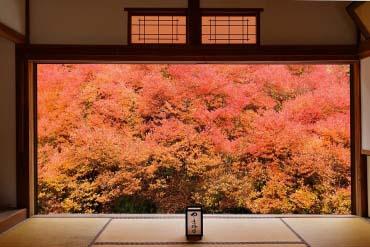 Ankokuji Temple(Hyogo & Kobe)