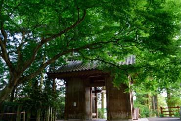 大興善寺(佐賀)