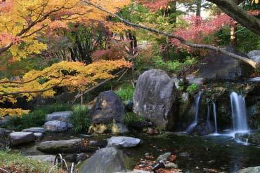 白鳥庭園(愛知)