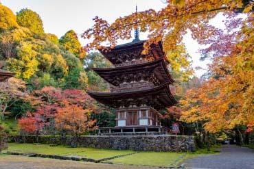 Chùa Saimyo-ji