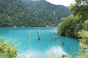 Hakusui Lake(Gifu)