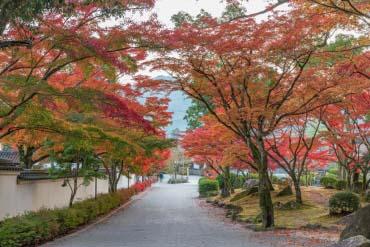 Công viên momijidani