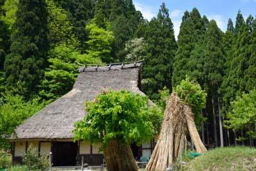 小入谷(滋賀・琵琶湖)