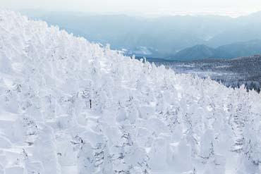 蔵王樹氷群(山形)