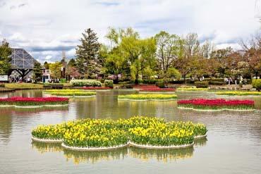 Tonami tulip park(Toyama)