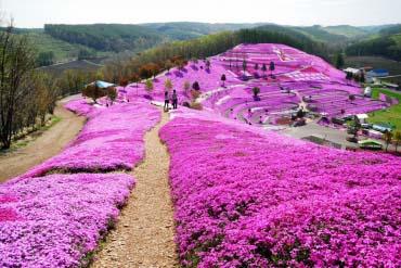 Takinoue Park(Other Areas of Hokkaido)