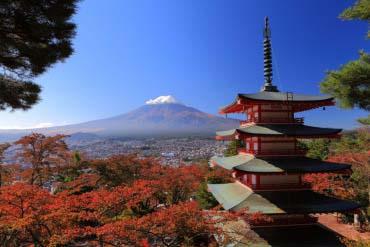 Arakura Mountain Sengen Park (Arakurayama Sengen Park)(Mt. Fuji)