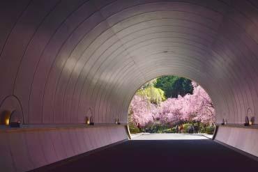 美秀美術館(滋賀・琵琶湖)