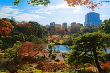 六義園(東京)