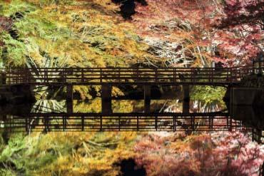Iwayado Park(Aichi)