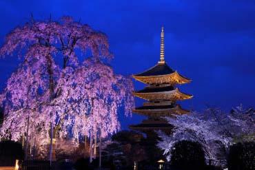 东寺(京都)