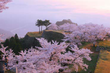 Takeda Castle Ruins(Hyogo & Kobe)