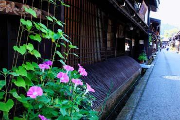 Takayama Old Town(Hidatakayama)