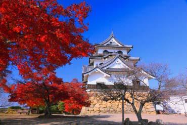 彦根城(滋贺、琵琶湖)