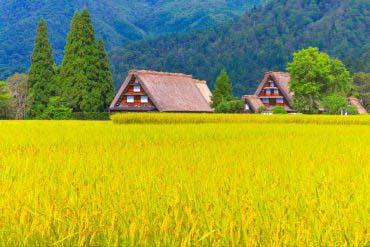 Shirakawa-go(Hidatakayama)