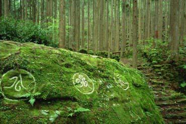 Kumano Kodo(Mie)