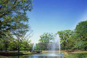 代代木公园(东京)