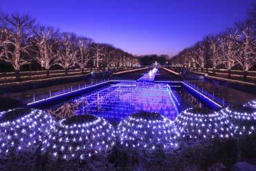 昭和記念公園(東京)
