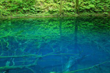 十二湖 青池(青森)