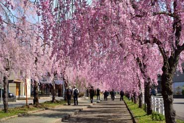 日中县纪念自行车人行步道