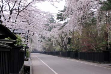 Kakunodate Samurai District(Akita)