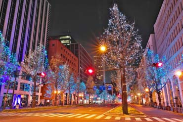 Midosuji Illumination(Osaka)