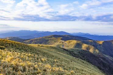 Núi Daruma yama(Shizuoka)