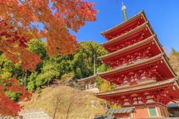 長谷寺(奈良)