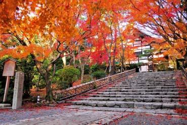 龍安寺(京都)