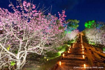 Thành Nakijin(Okinawa)