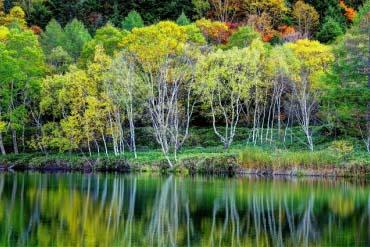 Kido Pond