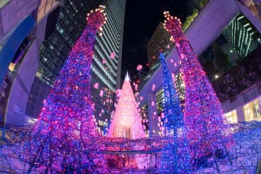 Caretta Shiodome Winter Illumination(Tokyo)