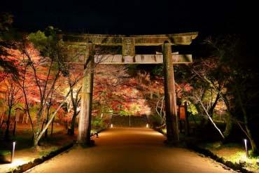 竈門神社(福岡・博多)