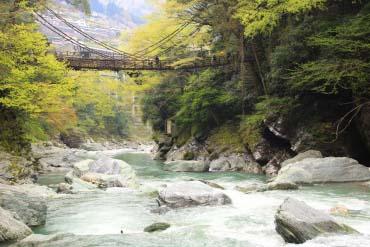 祖谷のかずら橋(徳島)