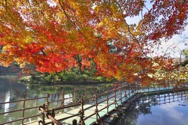Vườn Koishikawa Korakuen