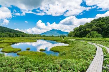 Ozegahara(Gunma)