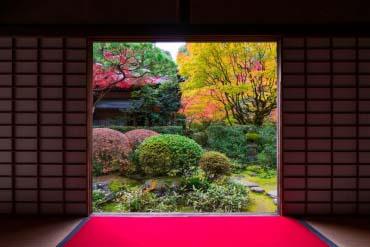 高桐院の紅葉(京都)