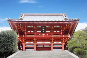 Tsurugaoka Hachiman-gu(Kamakura)