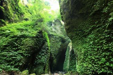 Shiwagara Waterfall(Hyogo & Kobe)