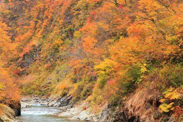 Khe núi Kiyotsukyo