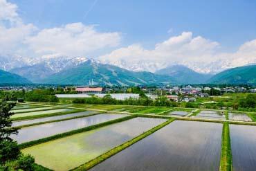 白马村(长野)