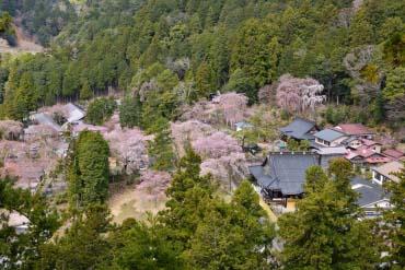 Kuon-ji Temple (Minobu-san)(Yamanashi)