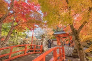 Ominesan Ryusenji Temple