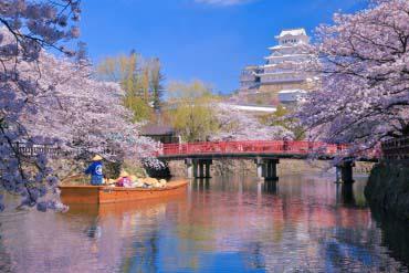 姫路城(兵库、神户)