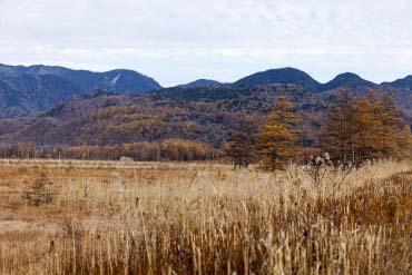 Senjogahara Marsh