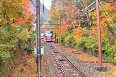 Tuyến cáp treo Hakone