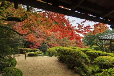 Shisendo Temple(Kyoto)