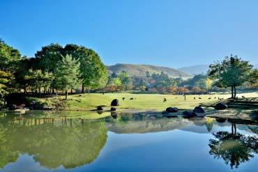 Nara Park(Nara)