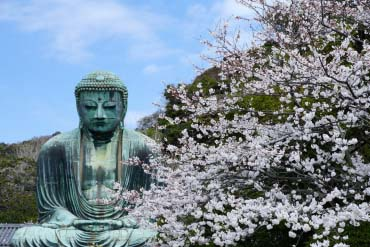 Great Buddha of Kamakura(Kamakura)