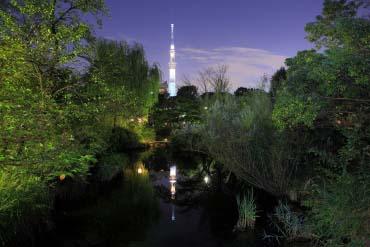 Mukojima Hyakkaen Garden(Tokyo)